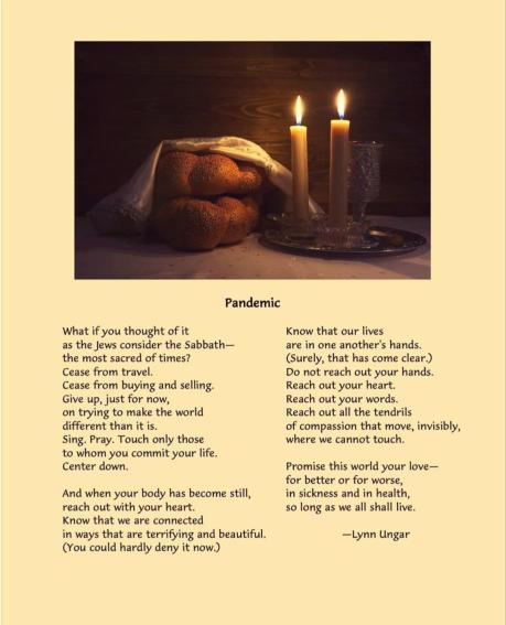 Lynn Unger poem PANDEMIC