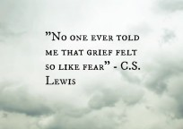 CS Lewis grief (2)