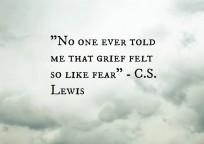 CS Lewis grief (2)